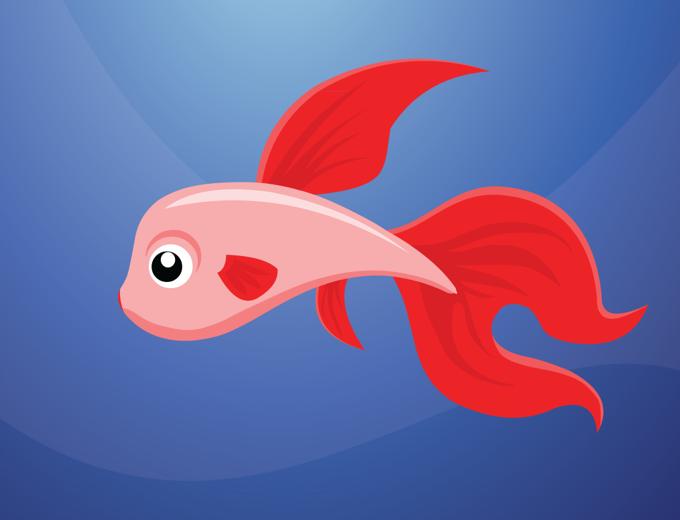 Kırmızı Balık Kaç Kaç