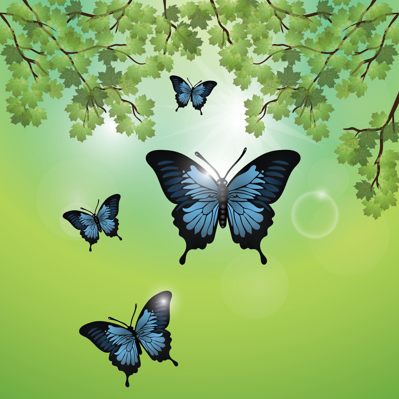 Üç Kelebek